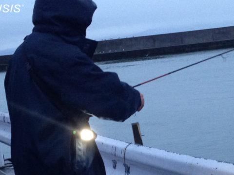 釣り用防水ライト